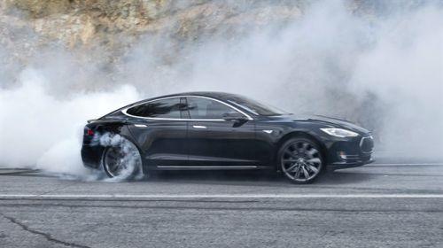 Tesla Model S cayır cayır