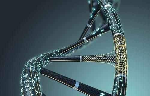 Artık DNA'nın da kendi hafızası var