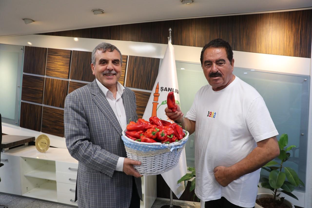 TATLISES İSOT FESTİVALİ'NE GELİYOR