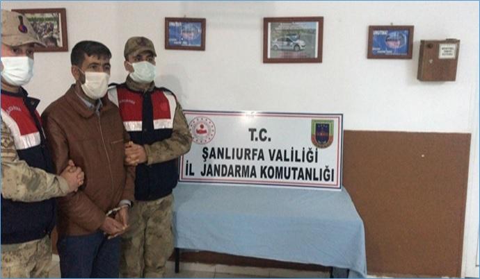 Şanlıurfa'da 160 Olayı Aydınlatan Jandarma, 359 Şüpheliyi Adalete Teslim