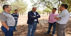 Hilvan'da Ormanlar Yeniden Ağaçlandıracak